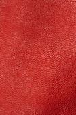 červená kůže textury na pozadí — Stock fotografie