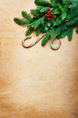 Christmas background with candy canes and spruce branch — Stock Photo