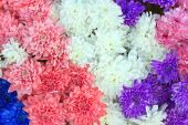 Colorful flowers background — Stockfoto