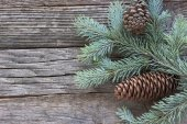 Christmas pine cones and needles on wooden background — Stock Photo