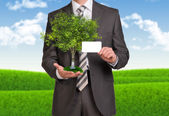 Businessman hold empty card and tree — Stok fotoğraf