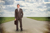 Businessman with briefcase standing on the road — Stock Photo