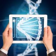Man hands using tablet pc. Image of DNA helix on screen — Stock Photo #55911829