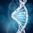 Human DNA. Background of hexagons world map, graph, wire-frame — Stock Photo #67489019