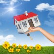 House and key in womans hand with flowers — Stock Photo #71610807