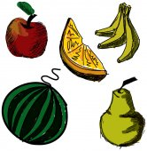 Drawn colored fruits. Vector illustration — Stock Vector