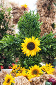 Bouquet with sun flowers — Stock Photo