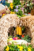 Autumn bouquet with corn — Stock Photo