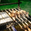 Fish on stick on a grill — Stock Photo #61654479