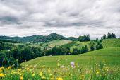 Landscape in Styria — Stock Photo