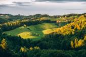 Summer Landscape in Southern Styria — Stock Photo
