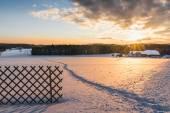 Beautiful winter landscape at sunset — Stock Photo
