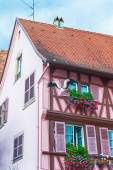 Pink half timbered house in alsace — Stock Photo