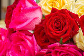 Roses rouges et roses sur la table — Photo