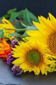 Fall sunflowers — Stock Photo