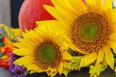 Fall sunflowers with pumpkin — Stock Photo