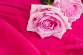 Pink  roses  on table — Stock Photo