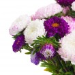 Mix of aster flowers — Stock Photo #54635655