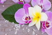 Spa e benessere impostazione — Foto Stock
