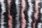Abstract painted fur background — Stock Photo