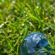 Glass globe in the grass — Stock Photo #57310567