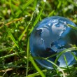Glass globe in the grass — Stock Photo #57312359