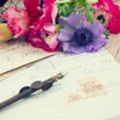 Pink anemone flowers  with old retro  quill pen — Stock Photo #57852347