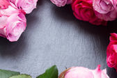 Red and pink  roses  frame on table — Foto de Stock