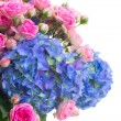 Pink roses and blue hortensia flowers close up — Stock Photo #59541665