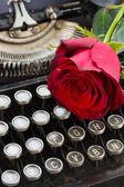 タイプライターに赤いバラ — ストック写真