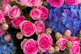 Bouquet of pink roses and blue hortensia — ストック写真