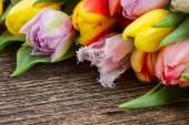 Pile  of multicolored  tulips — Stock Photo