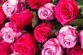 Темные и светлые розовые розы на столе — Стоковое фото