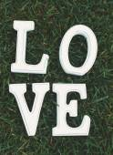 Love sign in grass — Foto Stock