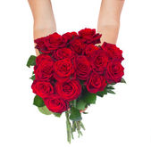 Hands holding roses — Stock Photo