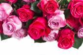 粉色的花关门 — 图库照片
