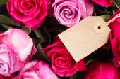 Dark and light  pink roses  on table — Stock Photo