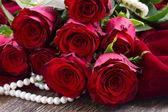 красные розы на бархате — Стоковое фото