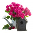 Pink rose  flowers with birdhouse — Stock Photo #62672365