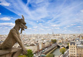 Gargoyle on Notre Dame Cathedral, France — Stock Photo