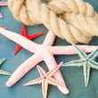 Marine rope with starfish — Stock Photo #64812129