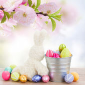 Egg hunt with easter bunny — Stock Photo