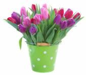 Bouquet di fiori di tulipano rosso e viola — Foto Stock