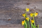 Daffodils on wooden background — Fotografia Stock