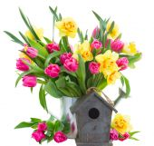 Bunch of  tulips and daffodils in vase — Stock Photo