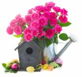 Pink rose  flowers with birdcage — Stock Photo