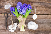 Blue hyacinth and easter set up — Stock Photo