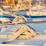 Marine knot — Stock Photo #68583471