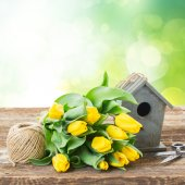 Yellow tulips  with birdcage — Stock Photo