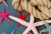 Marine rope with starfish — Stock Photo